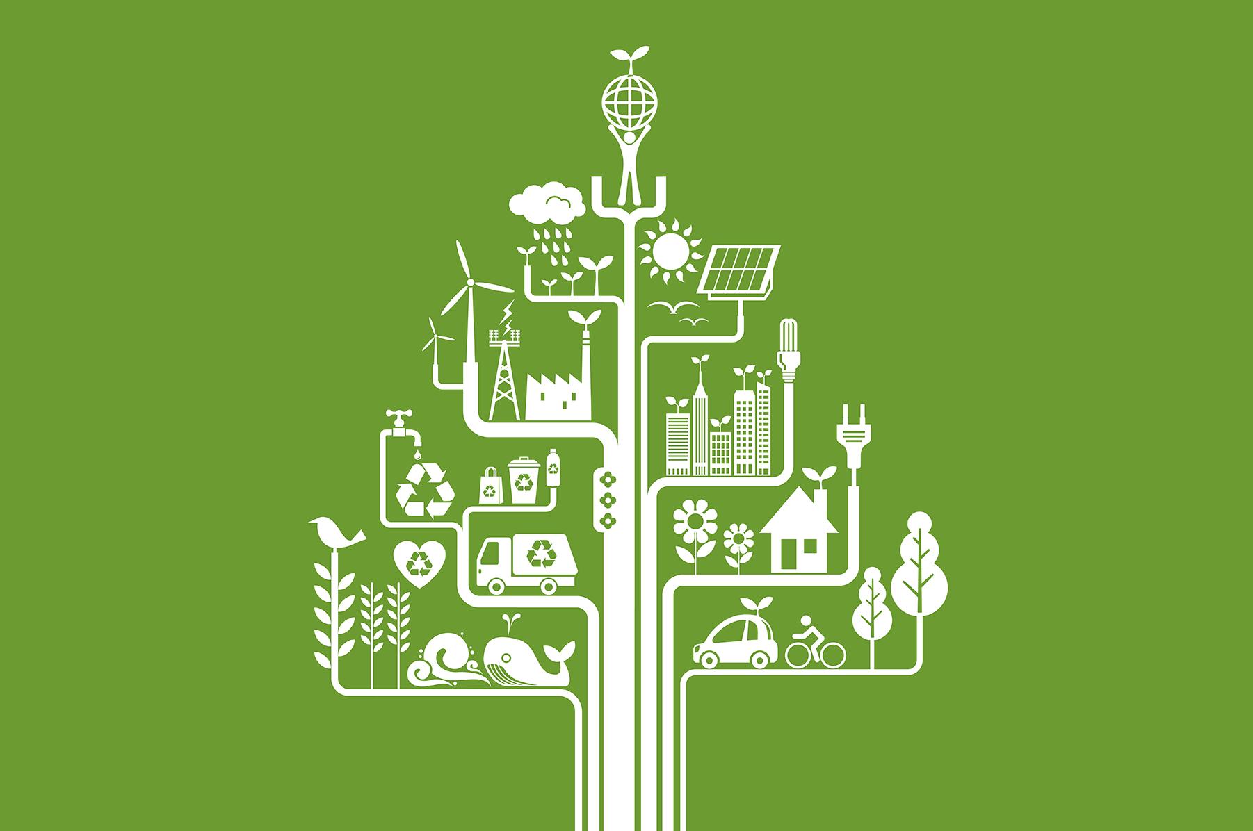 5e67f91d7a987-Blog -- Go Green Energy Efficient_Blog Image
